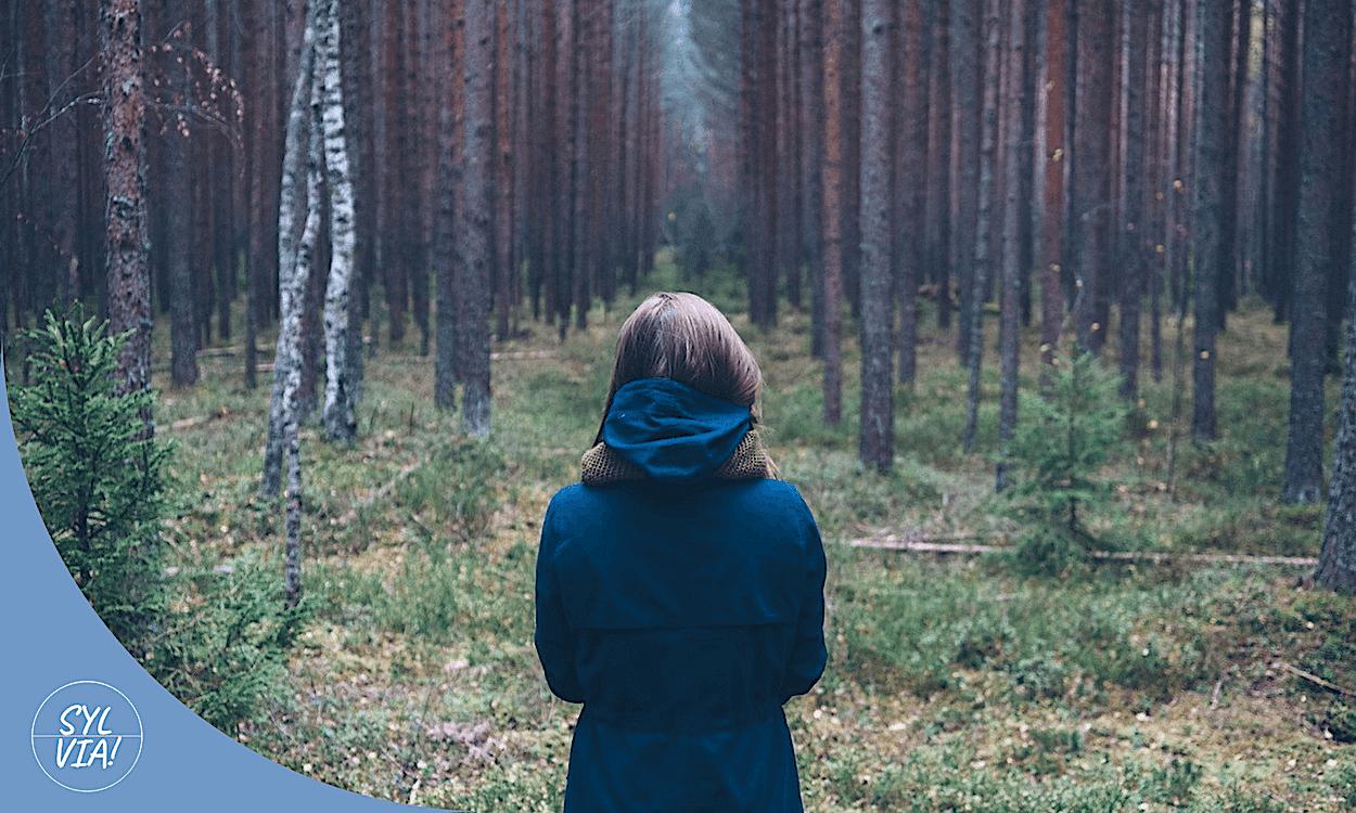 Als je door de bomen het bos niet meer ziet